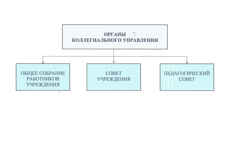 Органы коллегиального управления
